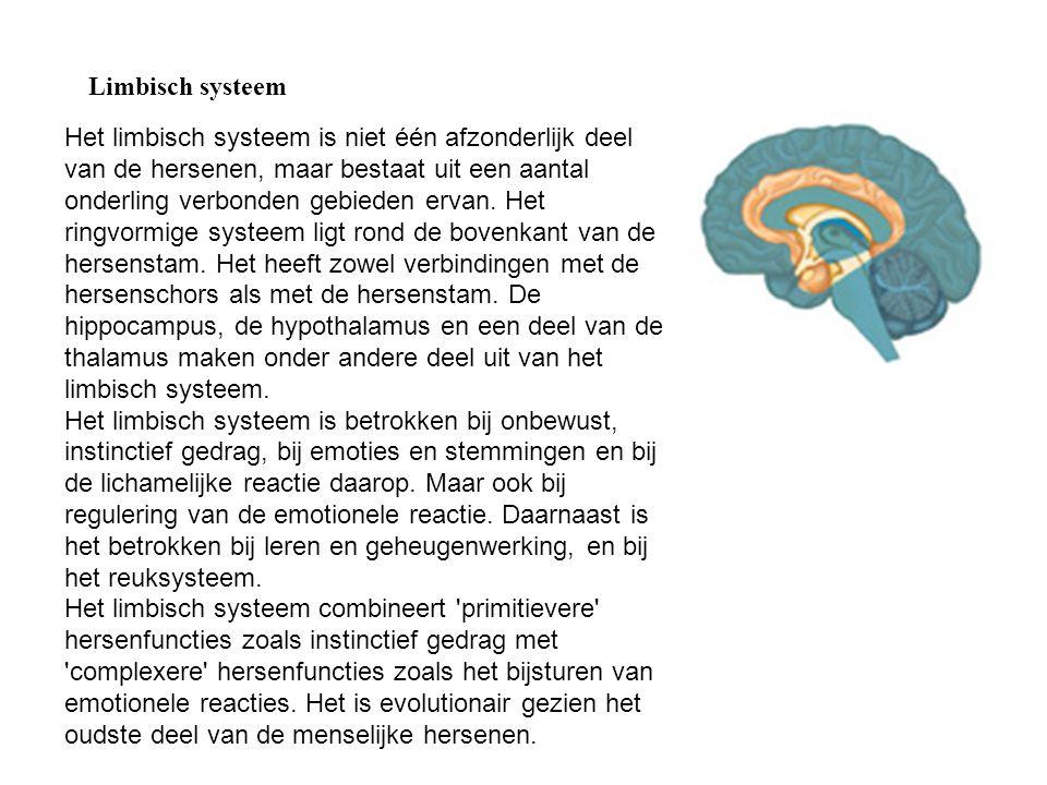 Limbisch systeem.