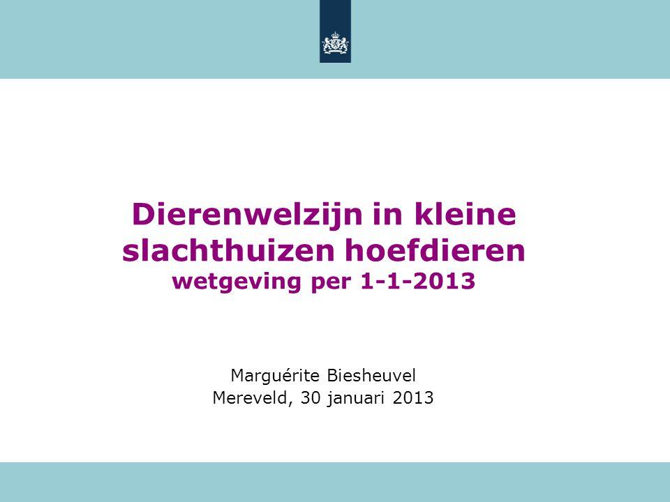 Dierenwelzijn in kleine slachthuizen hoefdieren wetgeving per 1-1-2013