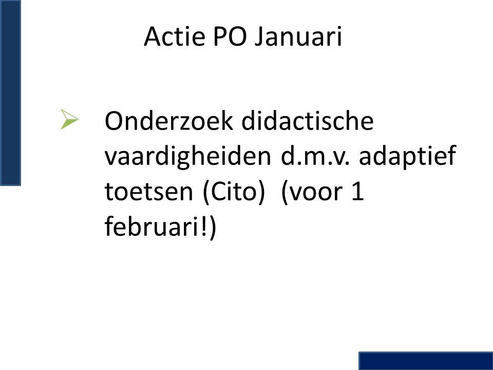 Actie PO Januari Onderzoek didactische vaardigheiden d.m.v.