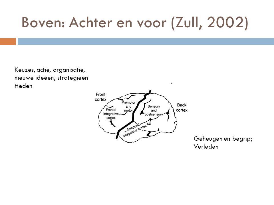 Boven: Achter en voor (Zull, 2002)