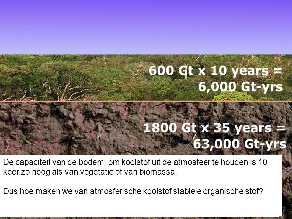 De capaciteit van de bodem om koolstof uit de atmosfeer te houden is 10 keer zo hoog als van vegetatie of van biomassa.