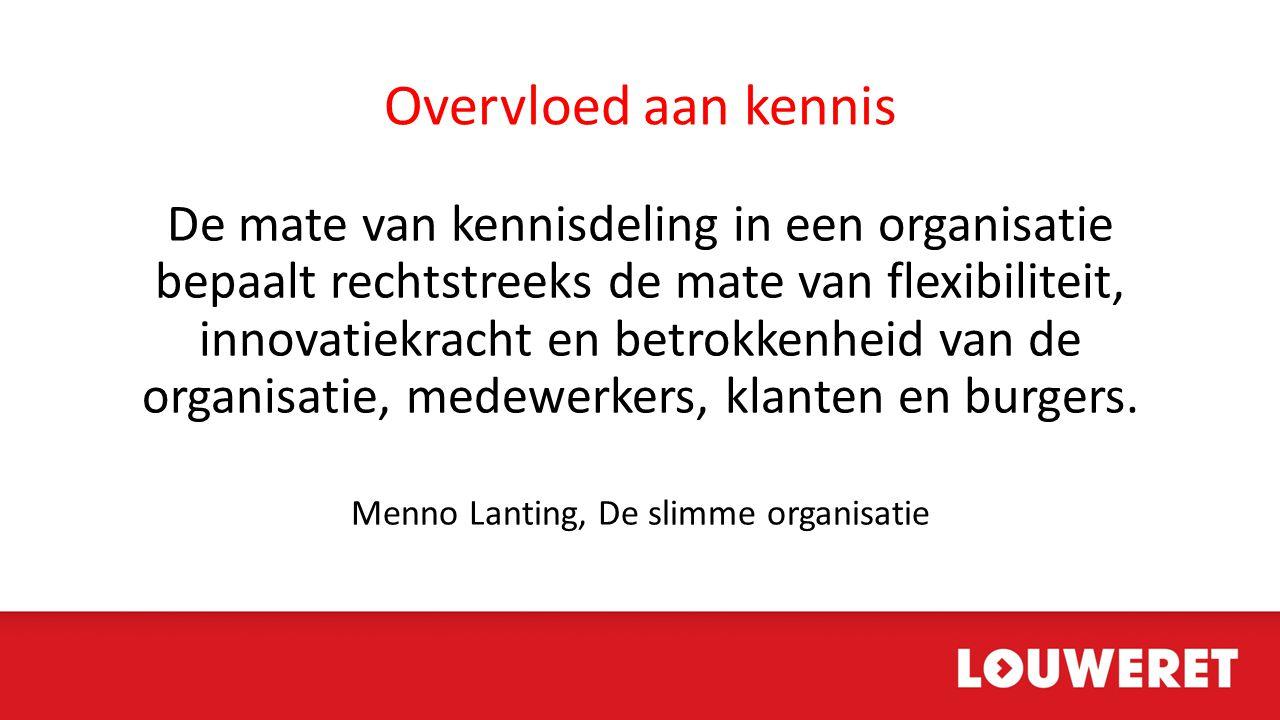 Menno Lanting, De slimme organisatie