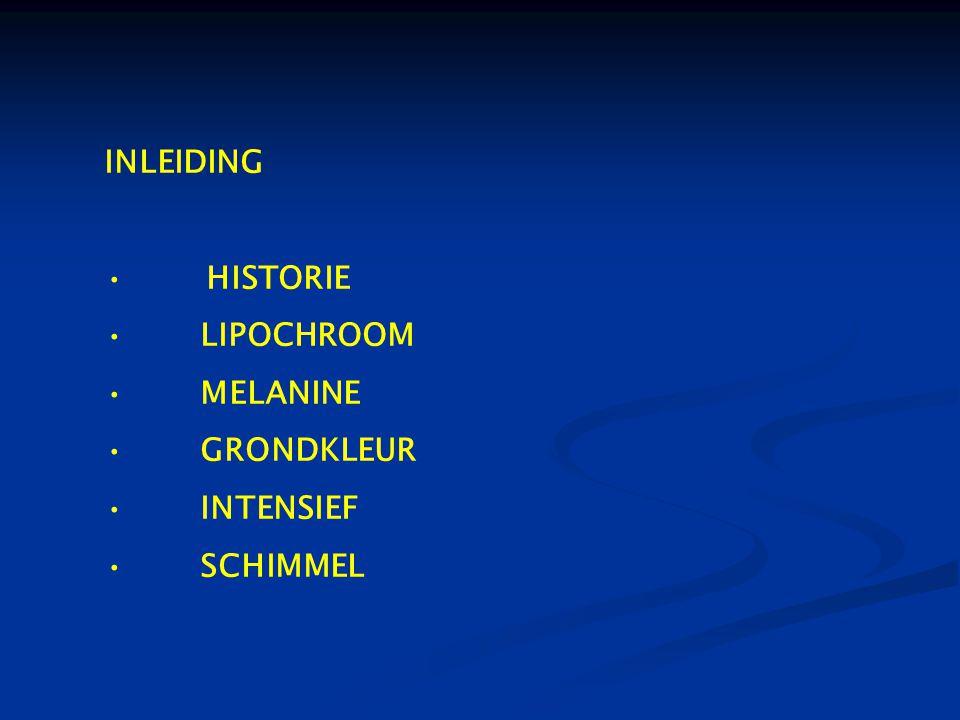 INLEIDING HISTORIE LIPOCHROOM MELANINE GRONDKLEUR INTENSIEF SCHIMMEL