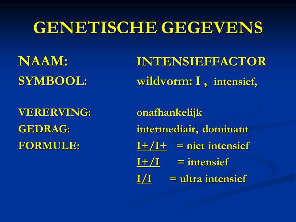 GENETISCHE GEGEVENS NAAM: INTENSIEFFACTOR