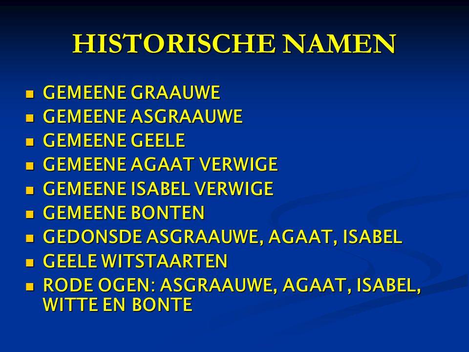HISTORISCHE NAMEN GEMEENE GRAAUWE GEMEENE ASGRAAUWE GEMEENE GEELE