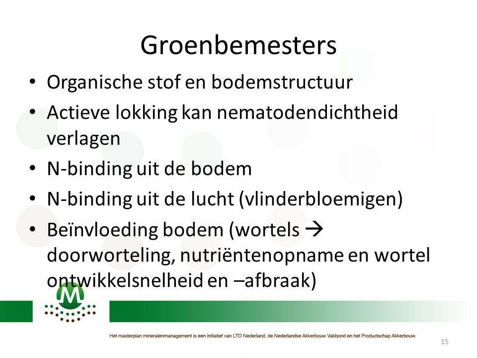 Groenbemesters Organische stof en bodemstructuur