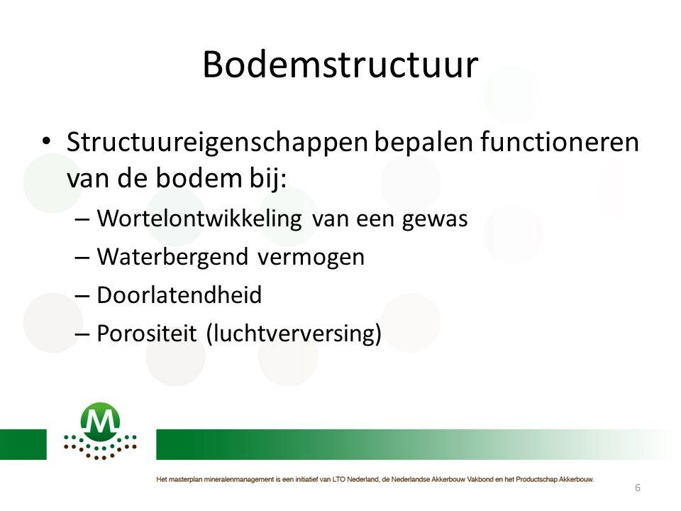 Bodemstructuur Structuureigenschappen bepalen functioneren van de bodem bij: Wortelontwikkeling van een gewas.