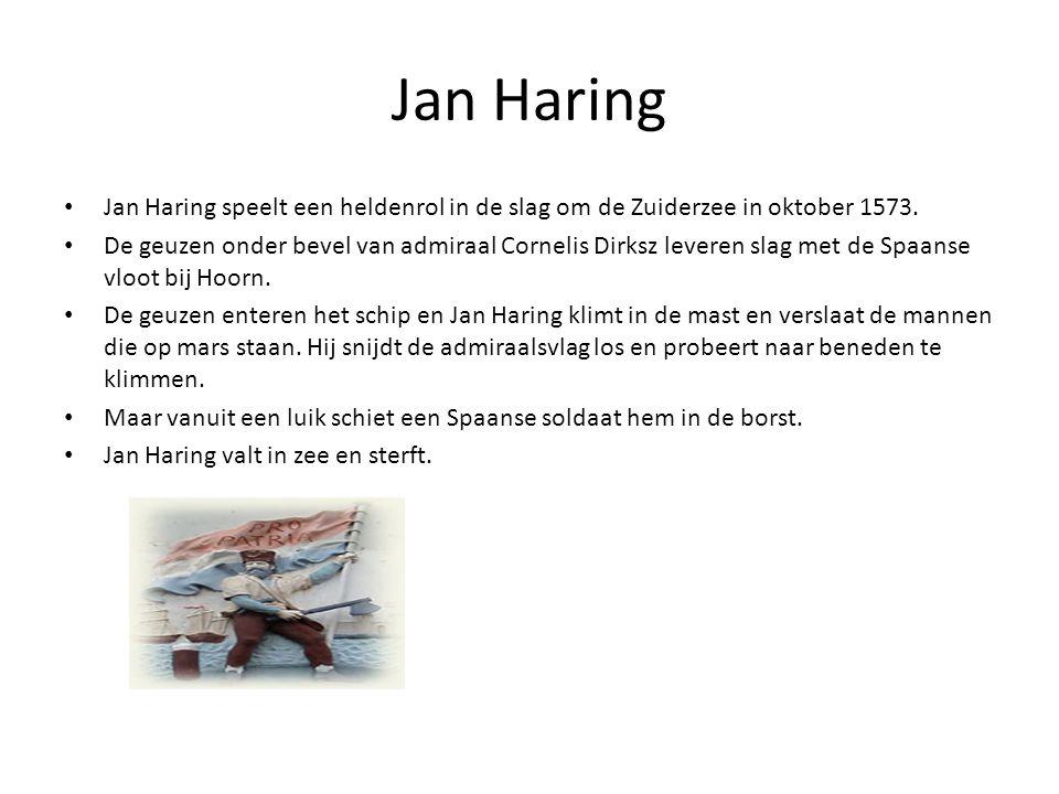 Jan Haring Jan Haring speelt een heldenrol in de slag om de Zuiderzee in oktober 1573.