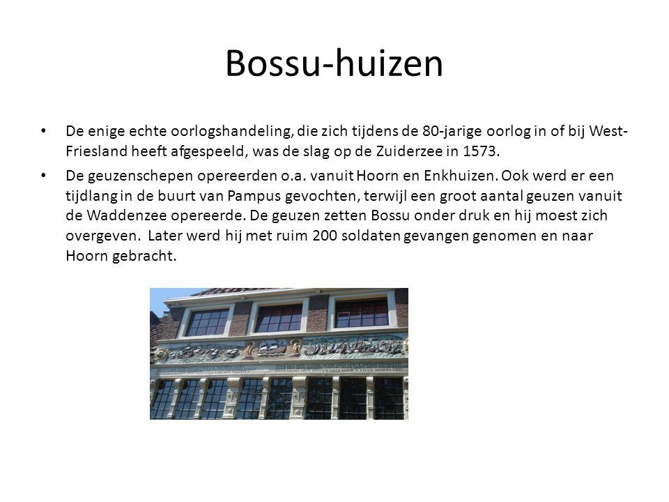 Bossu-huizen
