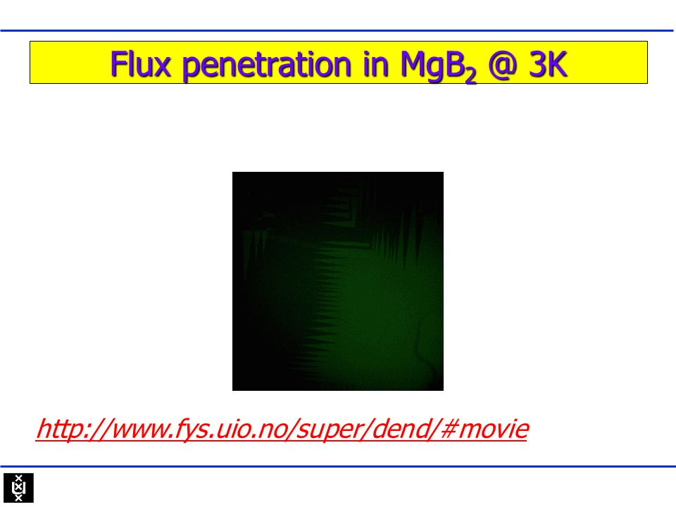 Flux penetration in MgB2 @ 3K