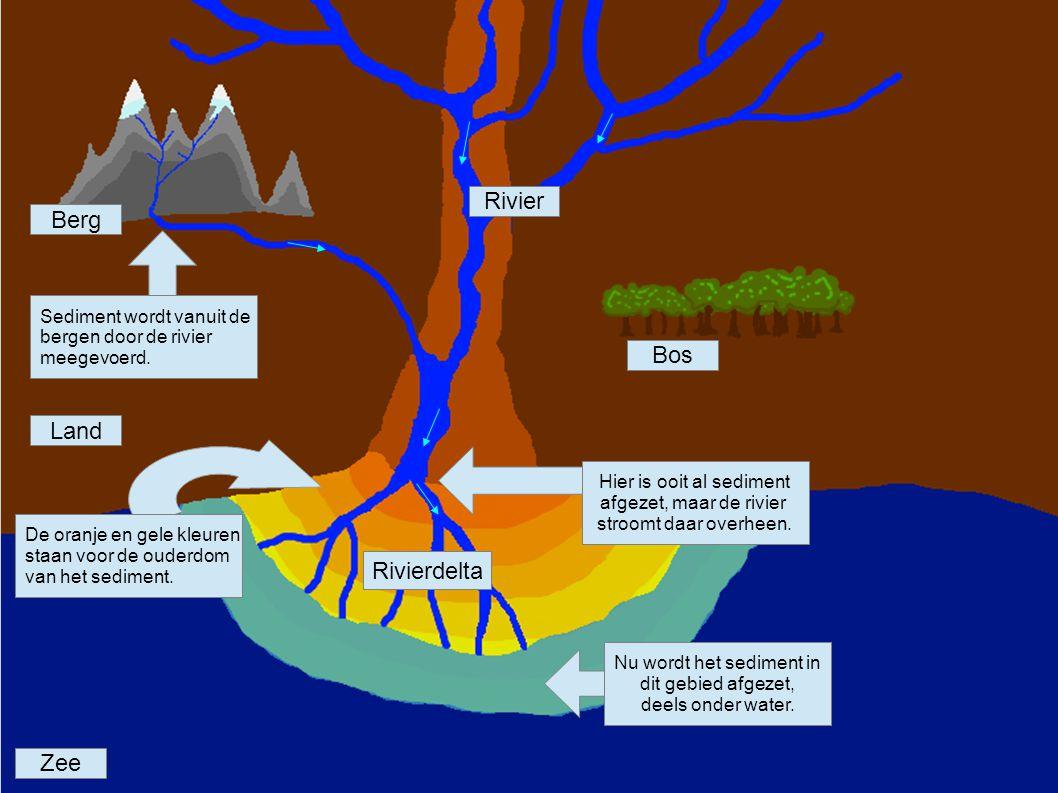 Rivier Berg Bos Land Rivierdelta Zee Sediment wordt vanuit de