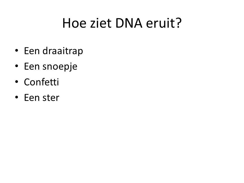 Hoe ziet DNA eruit Een draaitrap Een snoepje Confetti Een ster
