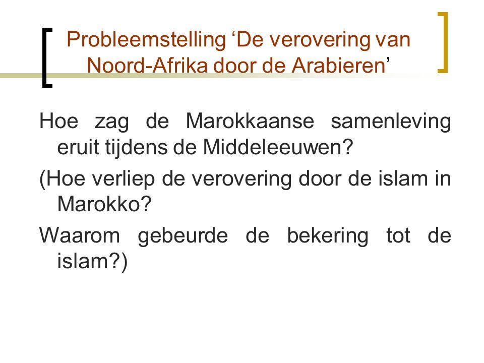 Probleemstelling 'De verovering van Noord-Afrika door de Arabieren'