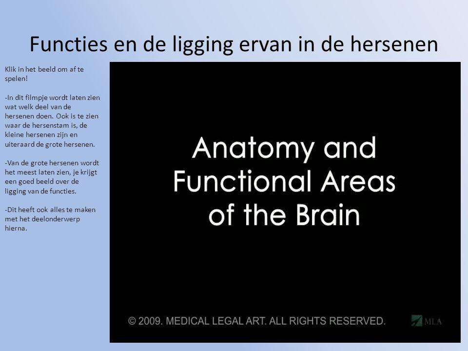 Functies en de ligging ervan in de hersenen