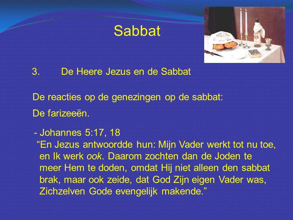Sabbat 3. De Heere Jezus en de Sabbat