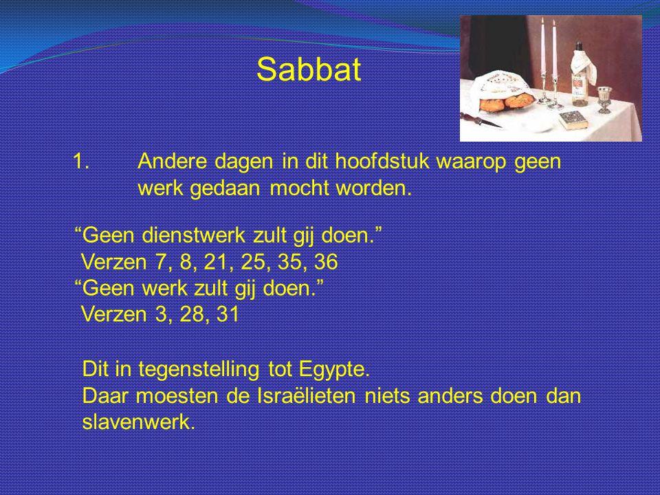 Sabbat 1. Andere dagen in dit hoofdstuk waarop geen werk gedaan mocht worden.