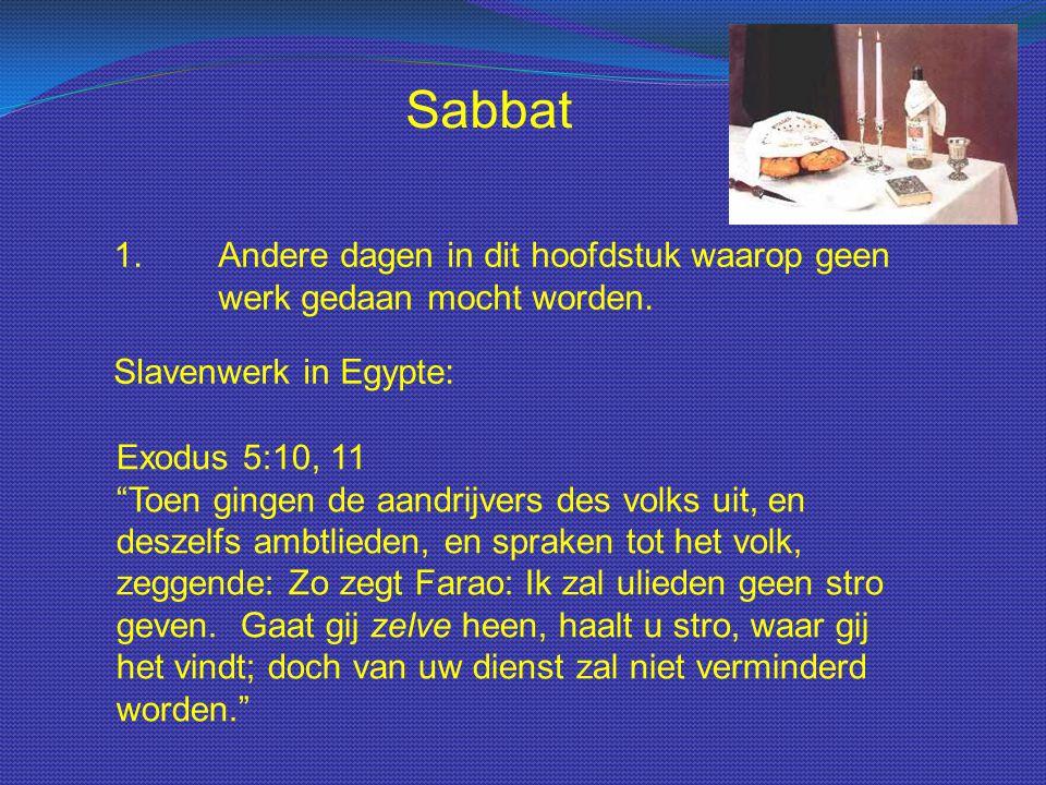 Sabbat 1. Andere dagen in dit hoofdstuk waarop geen werk gedaan mocht worden. Slavenwerk in Egypte: