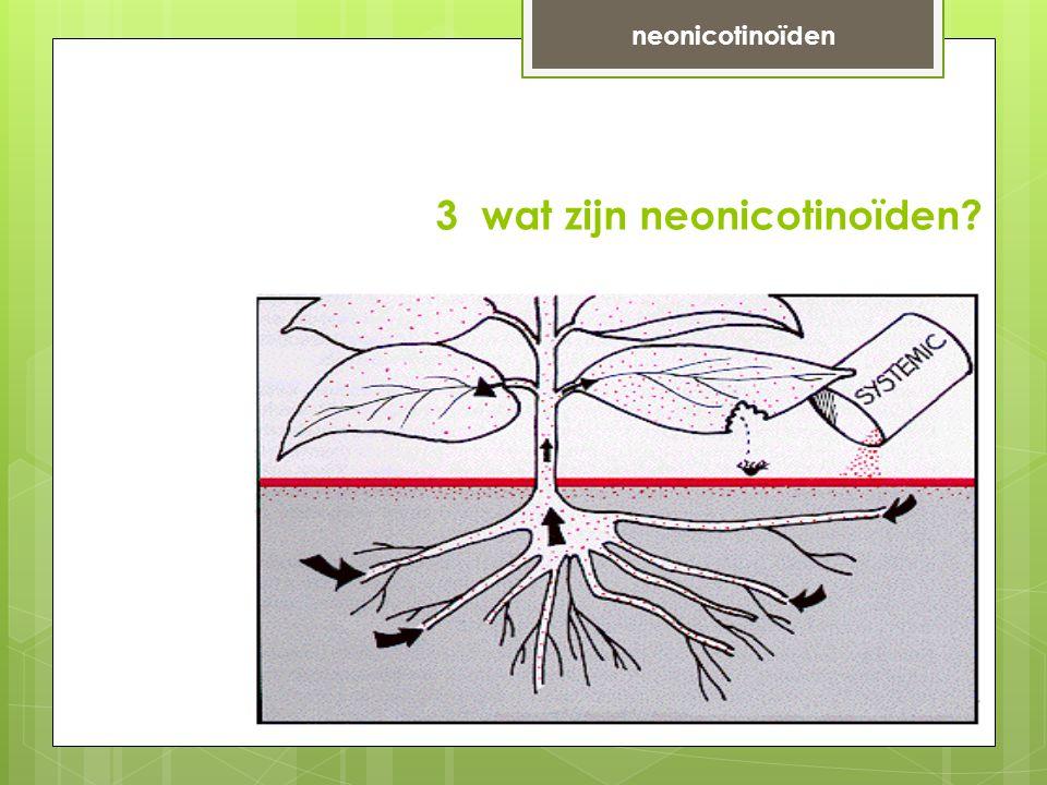 3 wat zijn neonicotinoïden