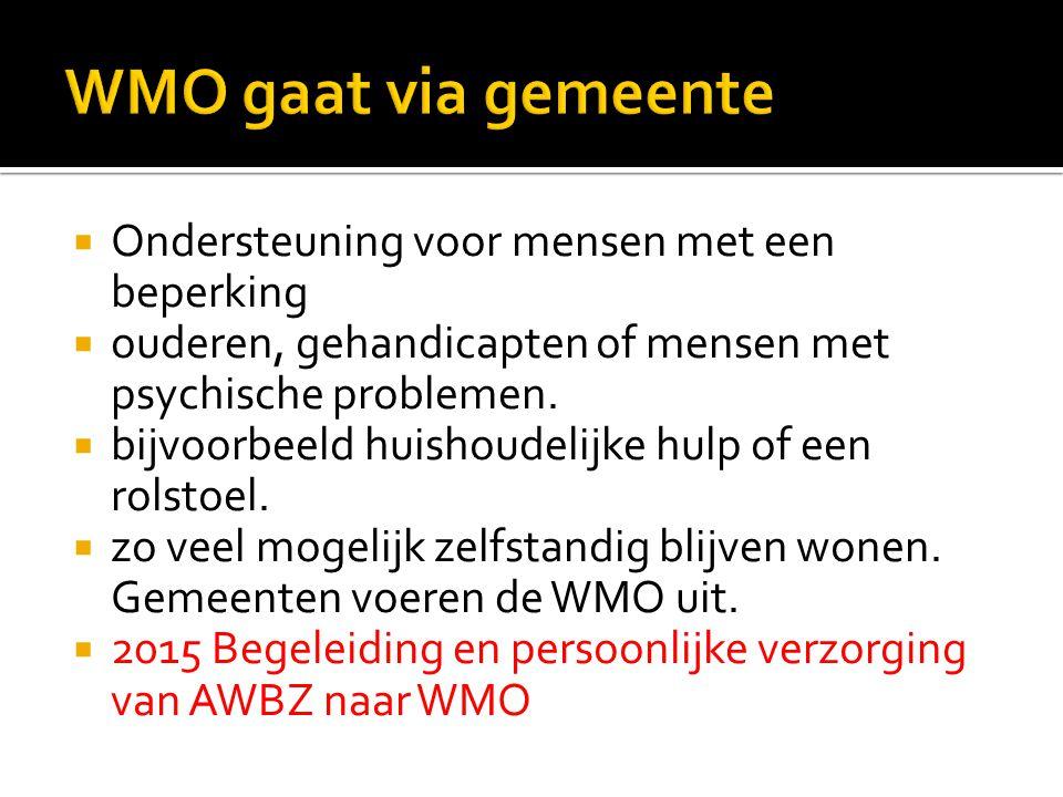 WMO gaat via gemeente Ondersteuning voor mensen met een beperking