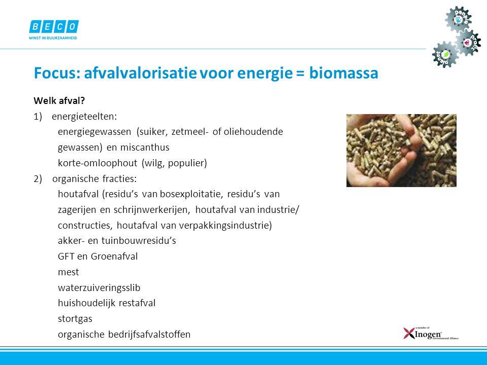Focus: afvalvalorisatie voor energie = biomassa