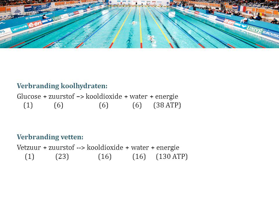 Verbranding koolhydraten: Glucose + zuurstof –> kooldioxide + water + energie (1) (6) (6) (6) (38 ATP) Verbranding vetten: Vetzuur + zuurstof --> kooldioxide + water + energie (1) (23) (16) (16) (130 ATP)