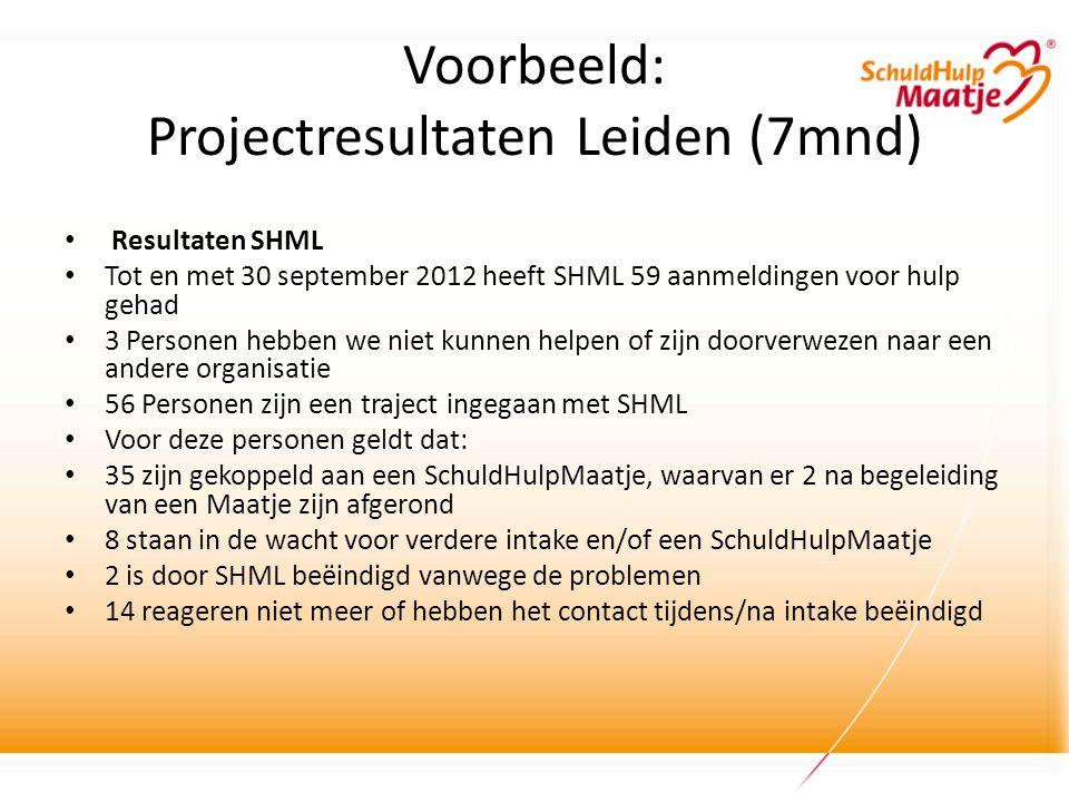 Voorbeeld: Projectresultaten Leiden (7mnd)