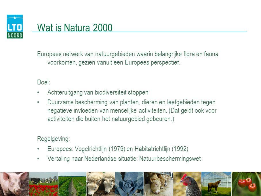 Wat is Natura 2000 Europees netwerk van natuurgebieden waarin belangrijke flora en fauna voorkomen, gezien vanuit een Europees perspectief.