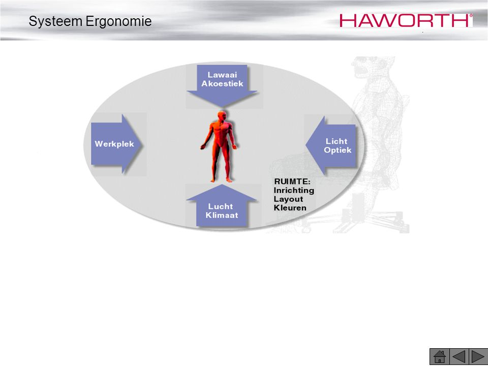 Systeem Ergonomie .