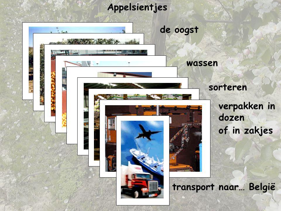 transport naar… België