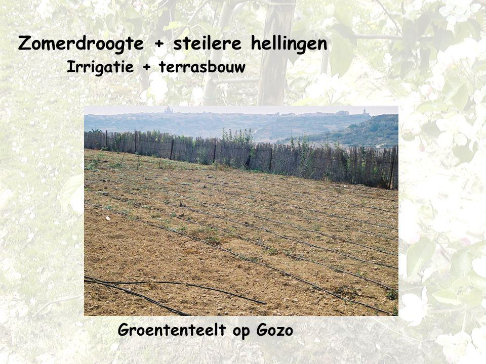 Zomerdroogte + steilere hellingen Irrigatie + terrasbouw