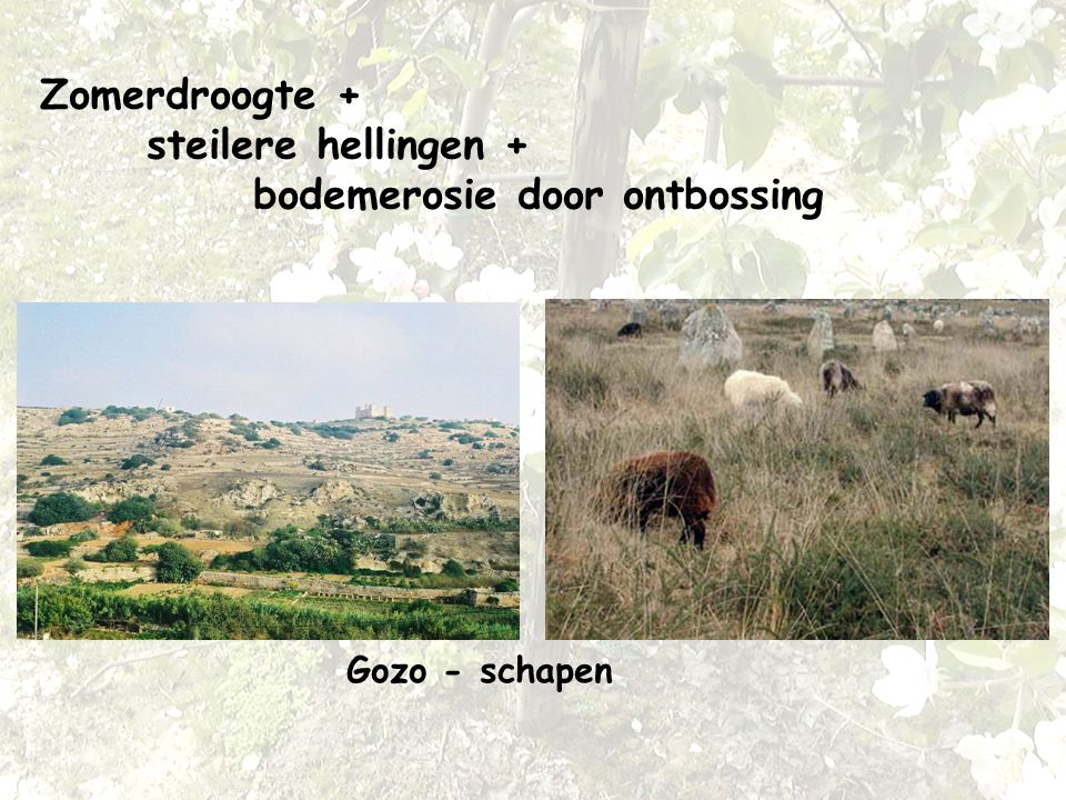 Zomerdroogte + steilere hellingen + bodemerosie door ontbossing