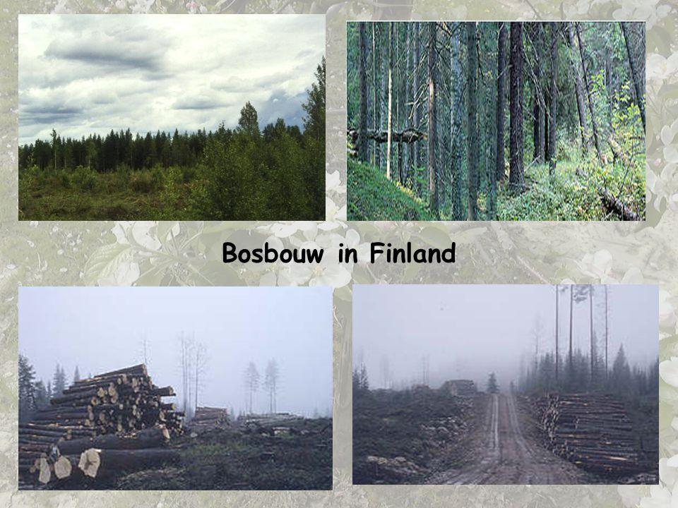 Bosbouw in Finland DIA 8. BOSBOUW IN FINLAND = voorbeeld voor Noord-Europa.