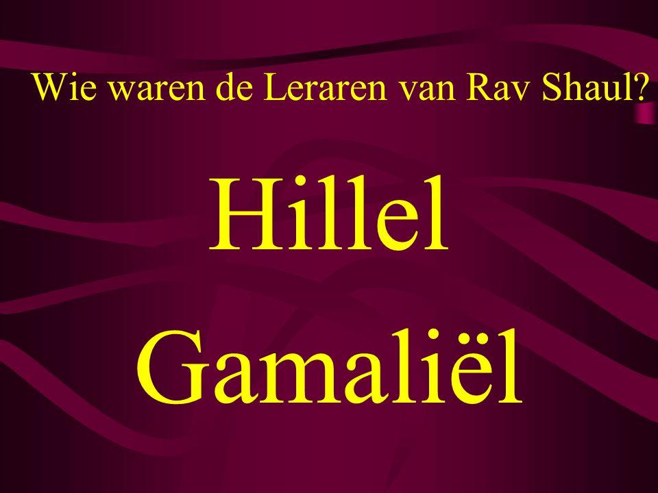 Wie waren de Leraren van Rav Shaul