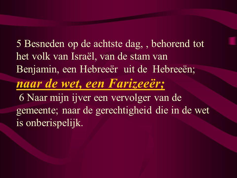 5 Besneden op de achtste dag, , behorend tot het volk van Israël, van de stam van Benjamin, een Hebreeër uit de Hebreeën; naar de wet, een Farizeeër;