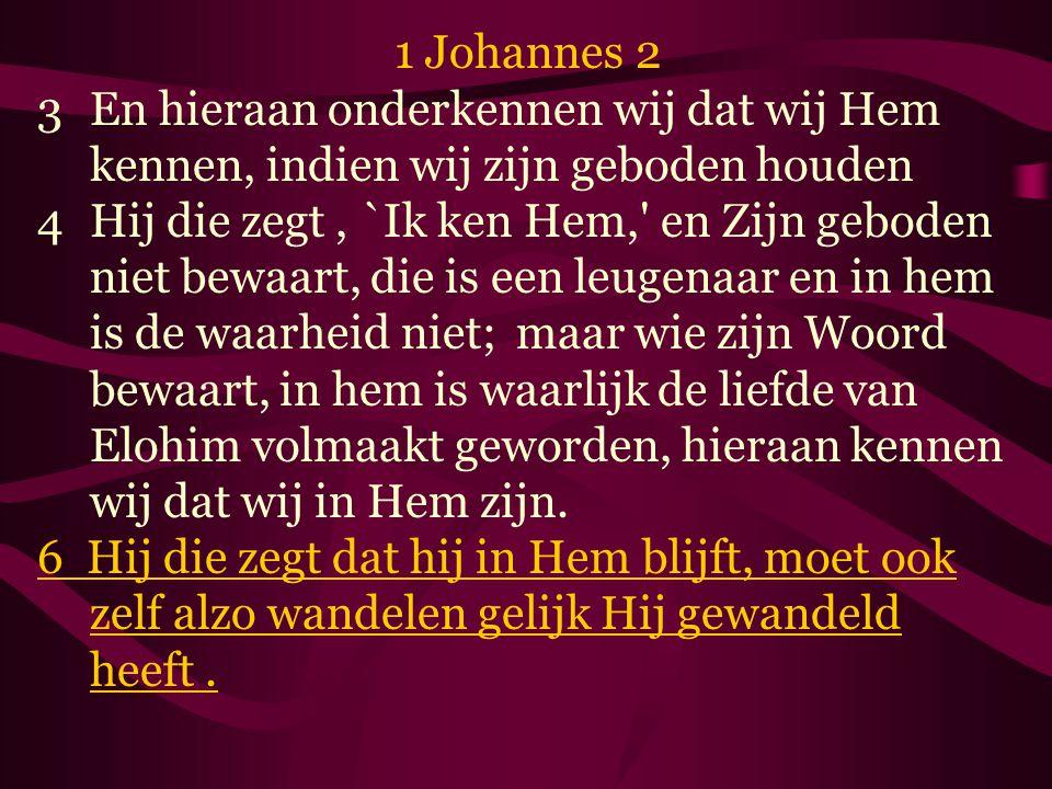 1 Johannes 2 En hieraan onderkennen wij dat wij Hem kennen, indien wij zijn geboden houden.