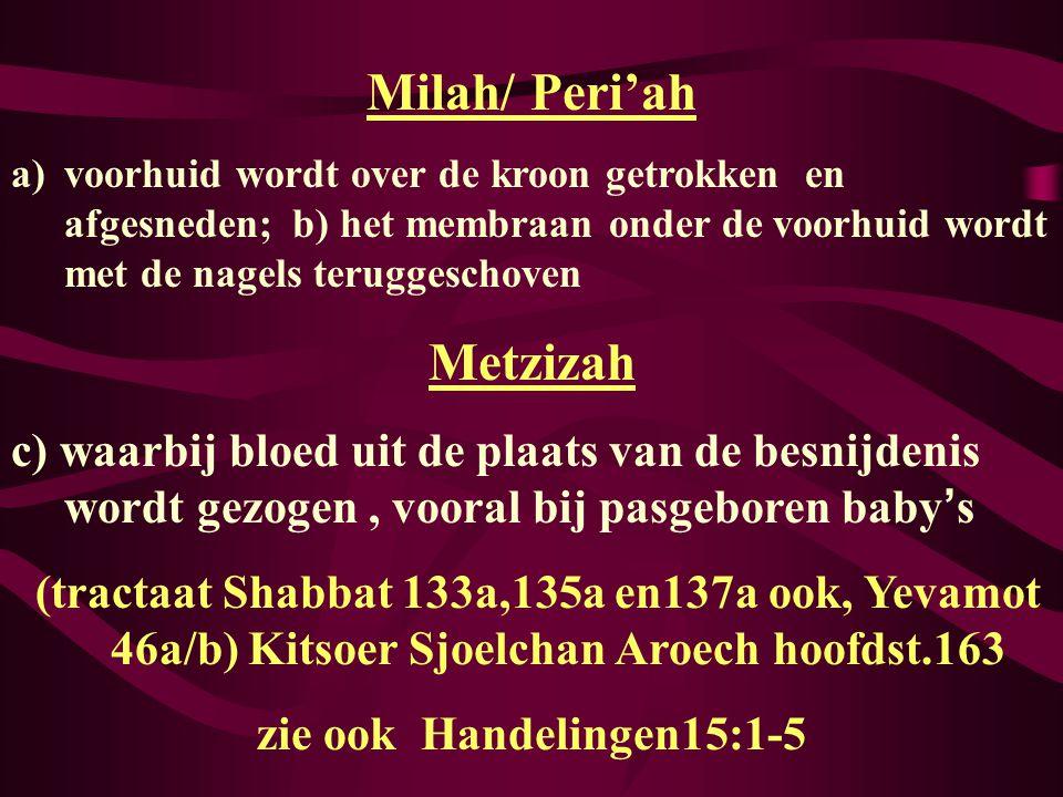 Milah/ Peri'ah Metzizah