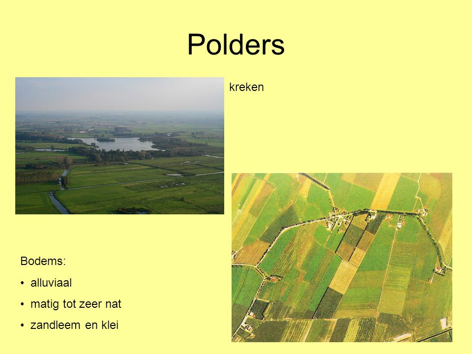 Polders kreken Bodems: alluviaal matig tot zeer nat zandleem en klei