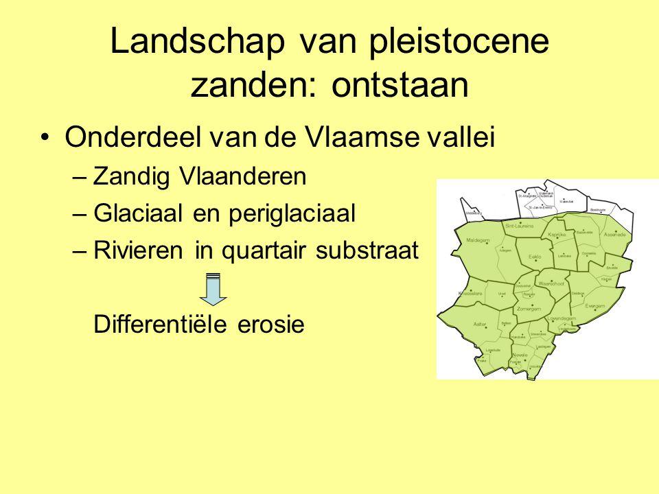 Landschap van pleistocene zanden: ontstaan