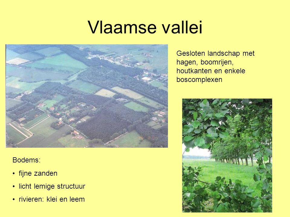 Vlaamse vallei Gesloten landschap met hagen, boomrijen, houtkanten en enkele boscomplexen. Bodems: