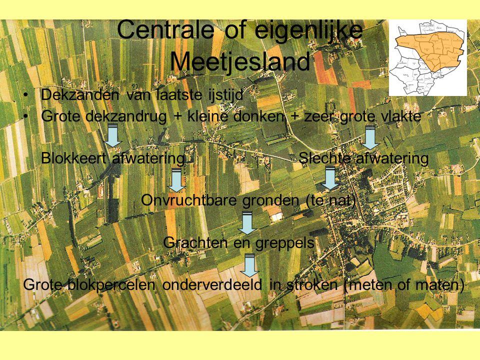 Centrale of eigenlijke Meetjesland