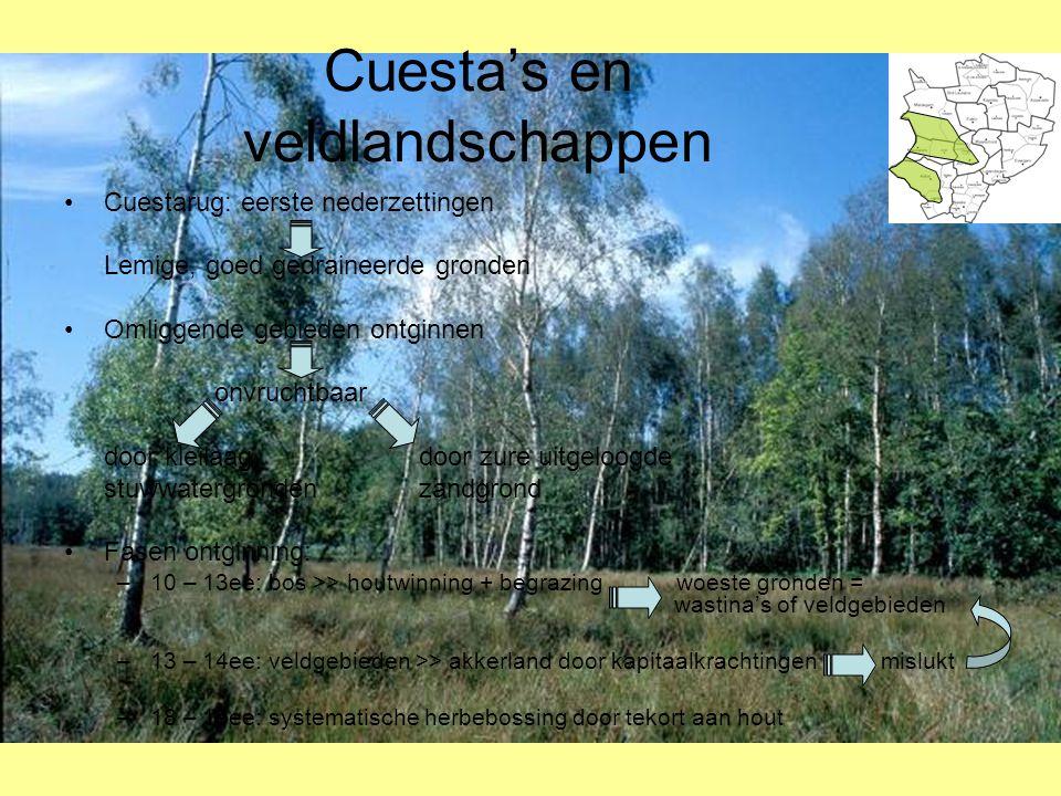Cuesta's en veldlandschappen