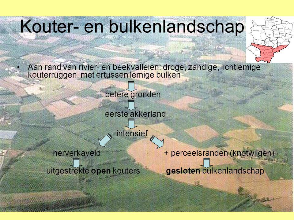 Kouter- en bulkenlandschap