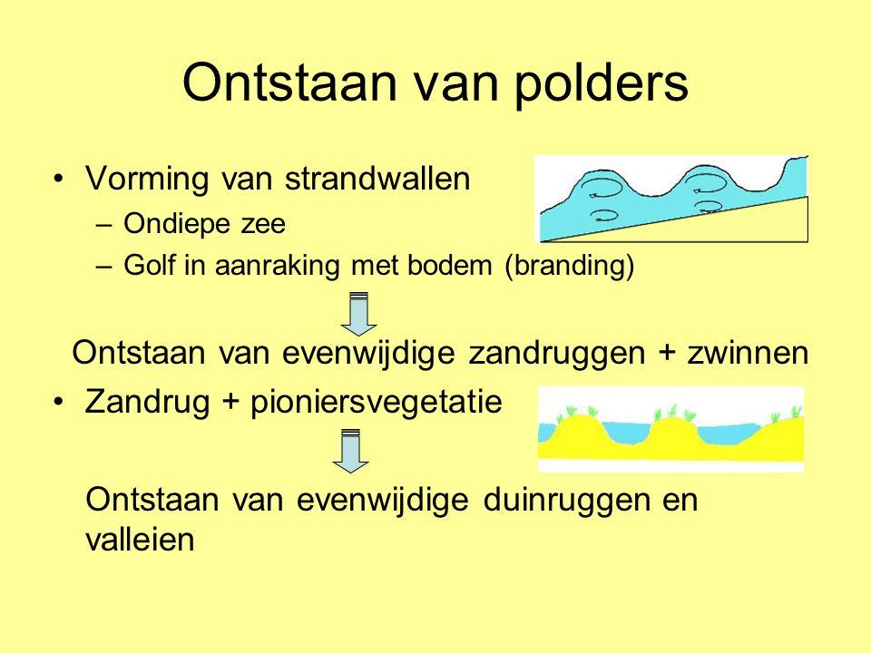 Ontstaan van polders Vorming van strandwallen