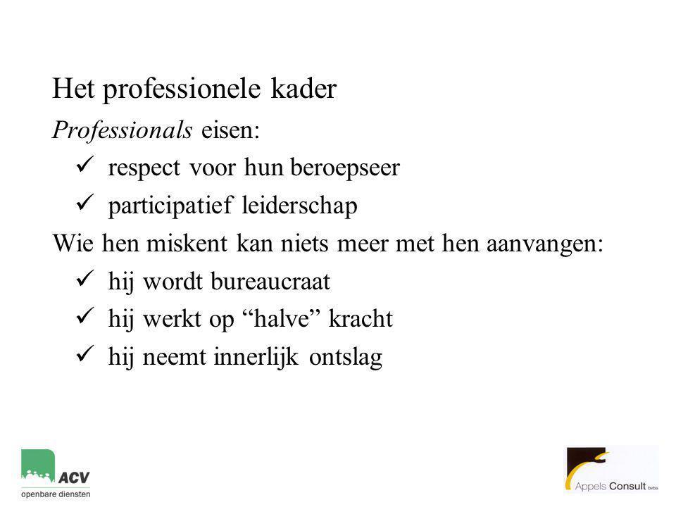 Het professionele kader