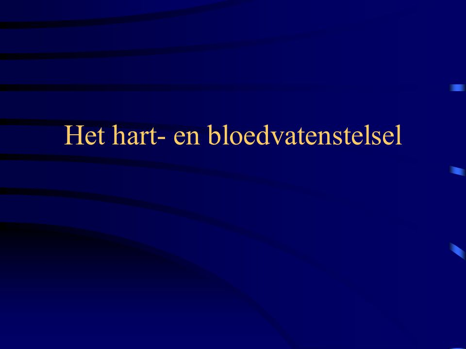 Het hart- en bloedvatenstelsel