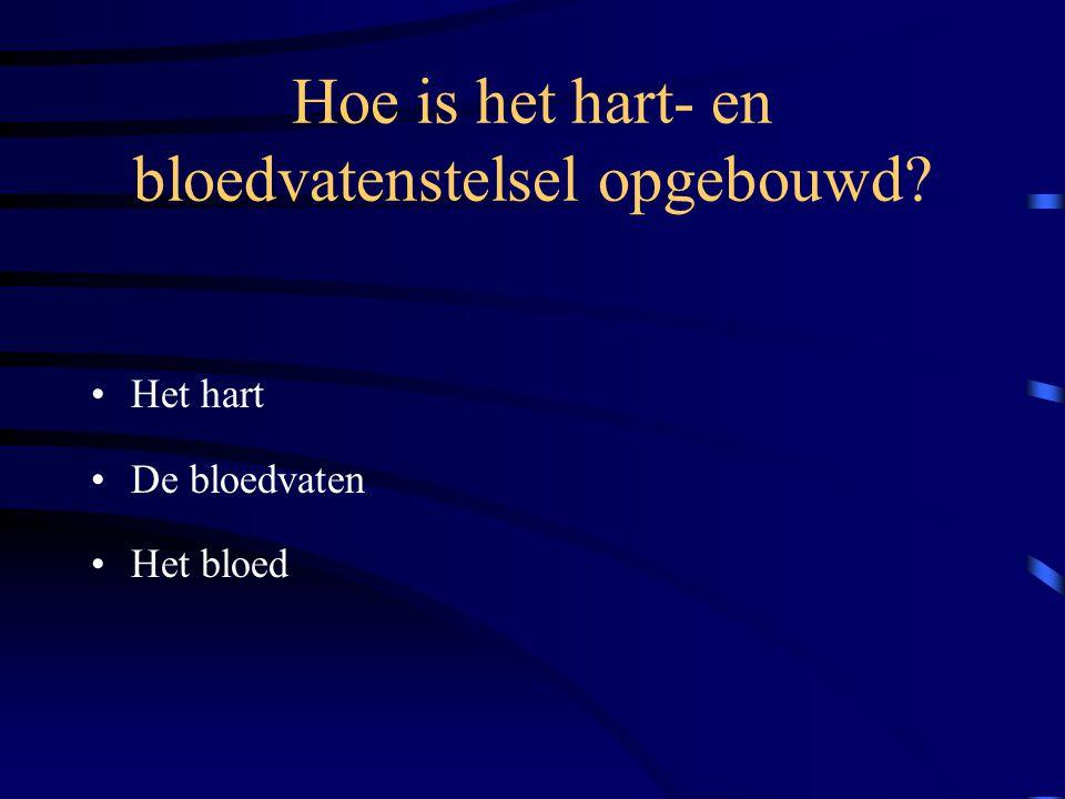 Hoe is het hart- en bloedvatenstelsel opgebouwd