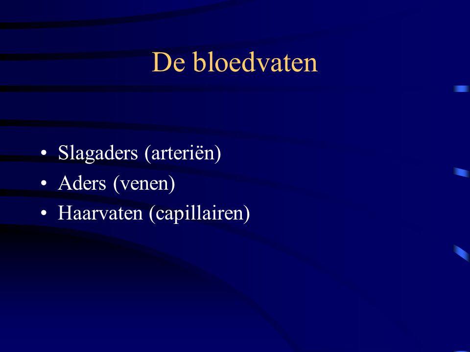 De bloedvaten Slagaders (arteriën) Aders (venen)