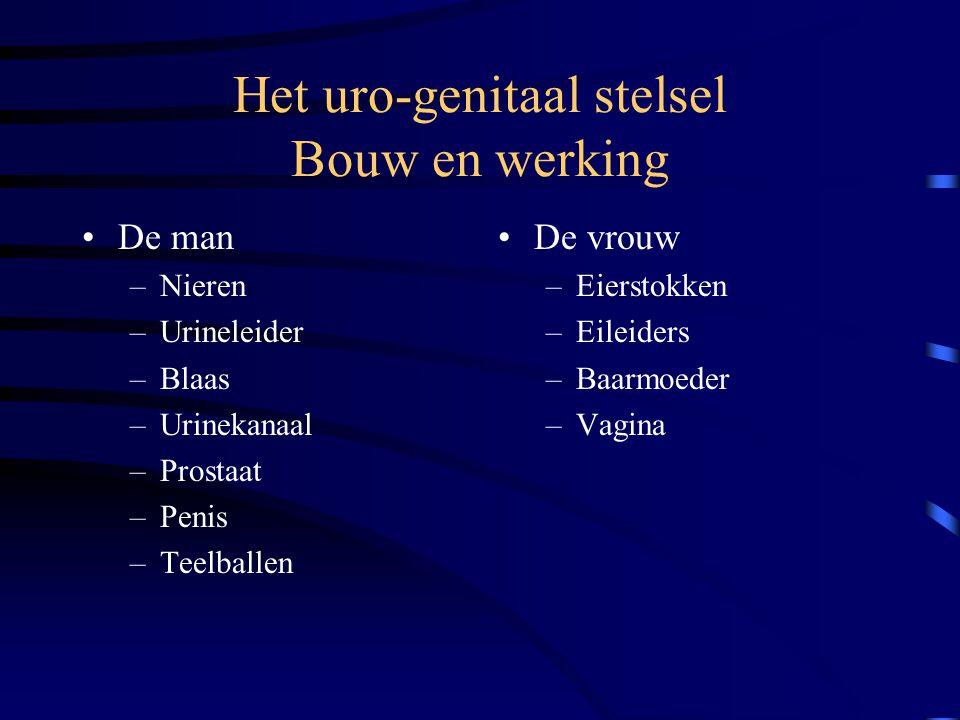 Het uro-genitaal stelsel Bouw en werking