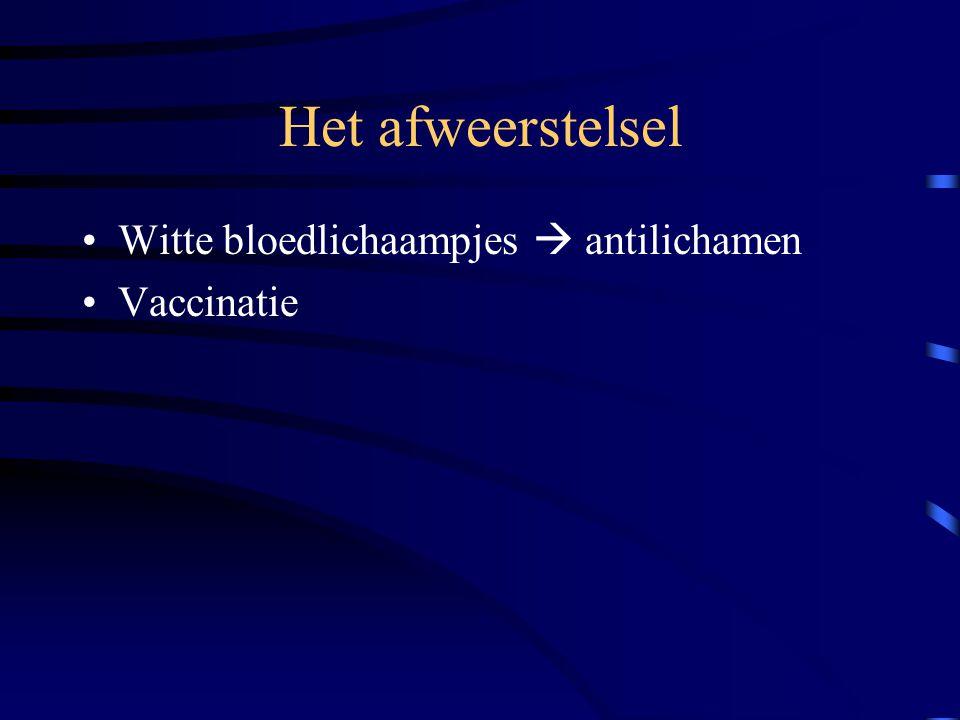 Het afweerstelsel Witte bloedlichaampjes  antilichamen Vaccinatie