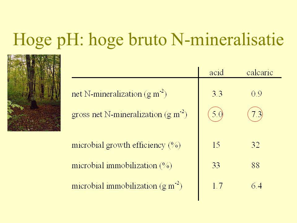 Hoge pH: hoge bruto N-mineralisatie